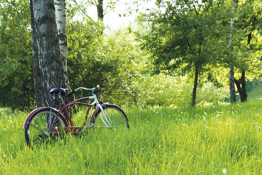 Leihrad, Social Business, Fahrrad, leihen, denk Passau